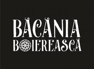 Băcănia Boierească –  rețete tradiționale în care sufletul este principalul ingredient